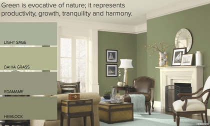 Over The Past Few Years Color Green Has Been Emerging As A Go To Shade For Home Painting Projects While It May Not Seem Like Some