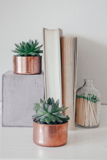 Mini Copper Planters With Succulents And Books